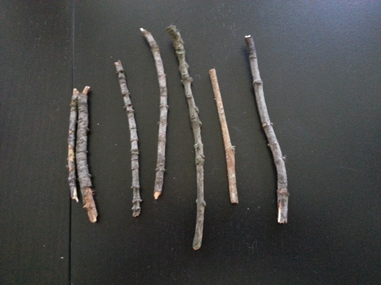 we drew sticks to determine who would be cooking. kate and dave got the shortest sticks